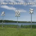 predator ad