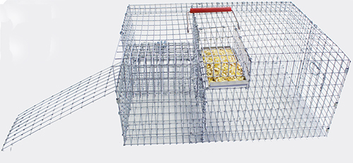 PMCA Repeating Bait Trap-ON BACKORDER