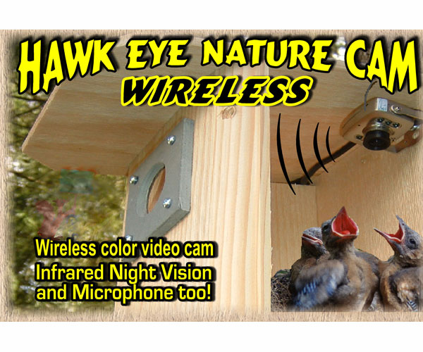 Hawk Eye Wireless Camera