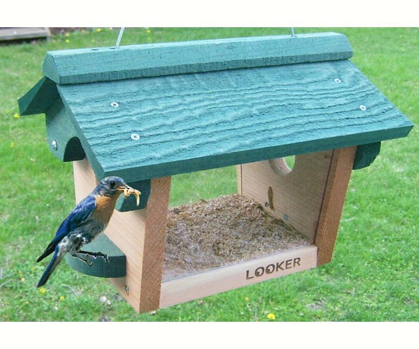 Feeder for Bluebirds with Pivoting Roof
