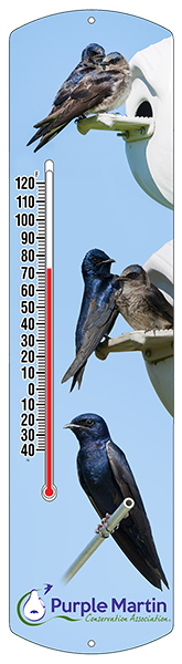 Purple Martin Thermometer