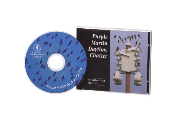 Purple Martin Daytime Chatter CD