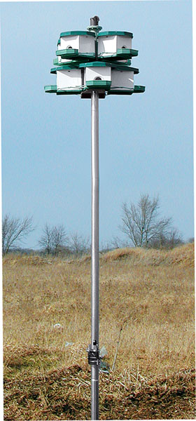 Heritage Farms Easy-Lift Pole