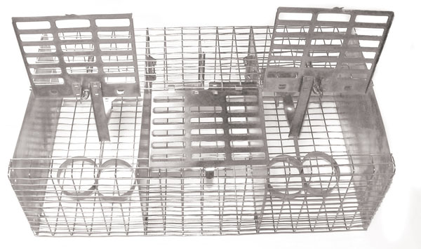Songbird Essentials Wire Sparrow Trap